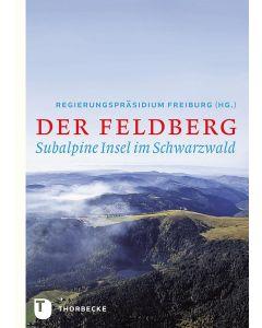 Der Feldberg
