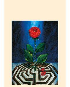 Rose und Labyrinth