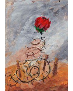 Stacheldraht und Rose