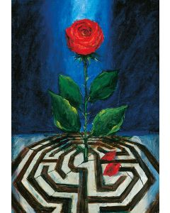 Rose und Labyrinth