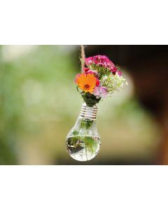 Blumenlicht