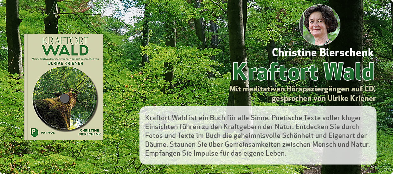 Christine Bierschenk: Kraftort Wald