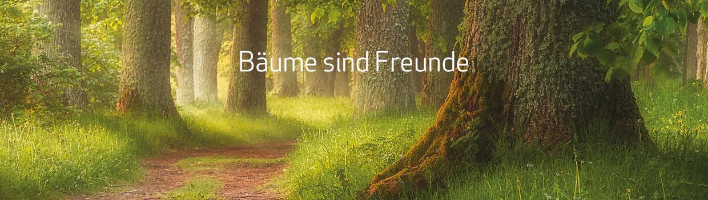 Bäume sind Freunde