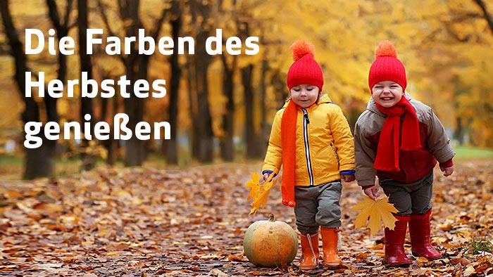 Die Farben des Herbstes genießen