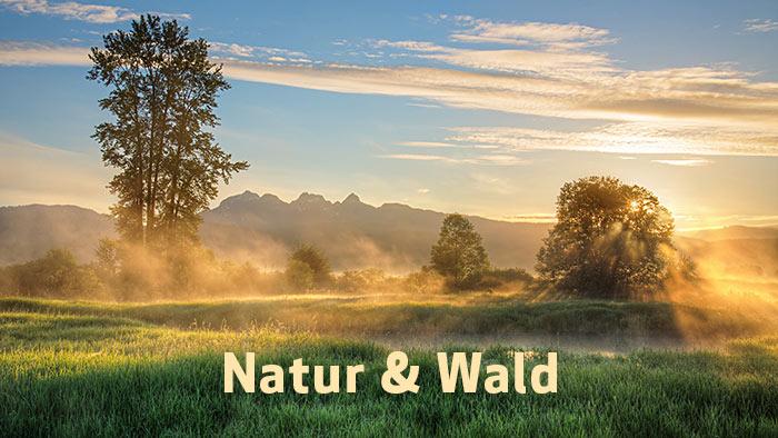 Natur & Wald